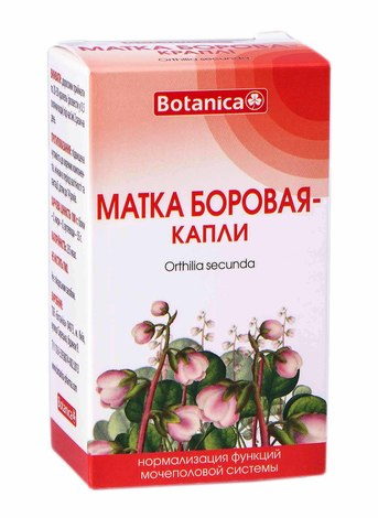 Botanica Борова Матка краплі 50 мл 1 флакон