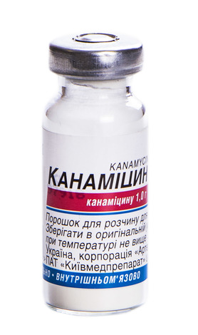 Канаміцин порошок для ін'єкцій 1 г 1 флакон